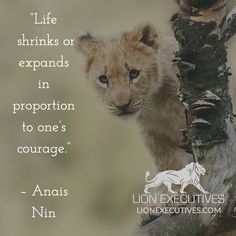 """Life shrinks or expands in proportion to one's courage.""   – Anais Nin"