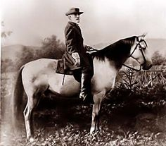 The photograph above shows General Robert E. Lee on Traveler. It was on April 1865 that Lee Surrendered to Ulysses S. Grant at Appomattox Courthouse. American Civil War (V) American Civil War, American History, General Robert E Lee, Southern Heritage, Southern Pride, Confederate States Of America, Civil War Photos, Us History, Military History