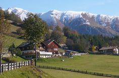 Bauernhof   Biobauernhof Veidlerhof   Matrei in Osttirol