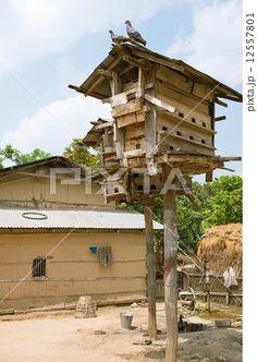 ネパール チトワン ソウラハ村の鳩小屋