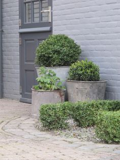 everything I from vintage galvanized planters, rock/brick pavers to the old fashioned kitchen garden door. now if they'd only left the brick in it's natural form . Dream Garden, Love Garden, Home And Garden, Back Gardens, Outdoor Gardens, Garden Doors, Garden Planters, Galvanized Planters, Garden Spaces