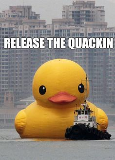 I'll never look at a rubber ducky the same