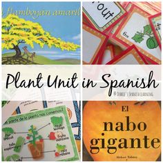 Debbie's Spanish Learning: Plant Unit in Spanish {With Free Printables}