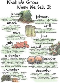 Farm shop seasonal calender, love it!