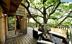 Tree House Rental in France