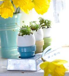 Easter eggs | ovos de páscoa
