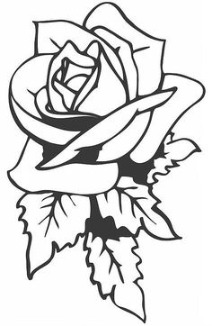 29 Best Rose Tattoo Outlines Images Rose Tattoos Pink Tattoos I