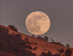 California. | 8 Super Photos Of The Supermoon