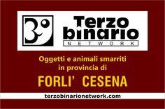 Oggetti e animali smarriti in provincia di Forlì Cesena