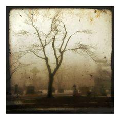 Gothic fog Eerie Gothic Decor foggy cemetery dark art by gothicrow, $16.00