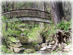 SOMEONE needs to go get this bridge and put it across Heathers creek so she can get out when it floods !!