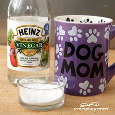 How Remove Stains from Ceramic & China- without using harsh chemicals.
