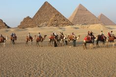 Egypt tours will educate travellers just as much as they fascinate them with the stories behind the ancient pyramids, the complicated history of Egypt's religions and the story behind some of our world's most iconic people.