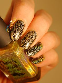 Black and Gold nails. Simple stamping using the Designer plate from DRK Nails over Subterfuge by Chaos and Crocodiles, a gold linear holo indie nail polish.