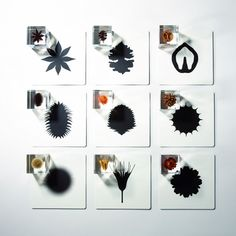 Nature, Science and Art Glass Tile Pendant, Graduation Project, Ikebana, Resin Art, Design Crafts, Design Process, Installation Art, Art Education, Flower Art