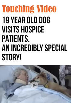 What a touching story - this 19 year old dog is a miracle. After I finished crying my eyes out, I had to pin this.  Please view this. So very touching & beautiful! How can anyone not love a dog?