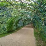 Daegu Arboretum; Top Things to Do in Daegu, South Korea