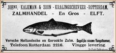 Rotterdam KralingseVeer - Advertentie