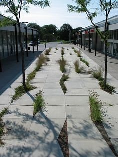 Mies van der Rohe Plaza by PEG office of landscape + architecture