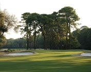 Port Royal Golf Club, Hilton Head Island, SC.  Been there, done that, will go back whenever possible.