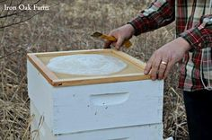 How To Feed Bees in Early Spring