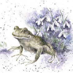 Wrendale Designs by Hannah Dale 'Happy Birthday' Frog Greeting Card - Set of Three Watercolor Animals, Watercolor Paintings, Happy Birthday Frog, Different Forms Of Art, Wrendale Designs, Frog Art, Animal Drawings, Cat Art, Pet Birds