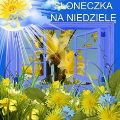 Good Morning, Anna, Facebook, Polish, Pictures, Good Day, Bonjour, Buongiorno