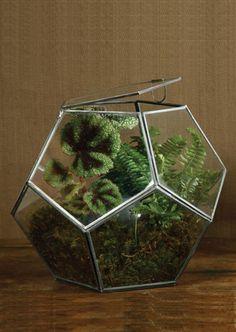 Kind of looks like a geodesic dome greenhouse!
