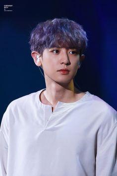 Chanyeol - 170805 SMTown Special Stage in Hong Kong Credit: Grinnin' Boy. Chanyeol Cute, Park Chanyeol Exo, Baekhyun Chanyeol, Kpop Exo, K Pop, Kdrama, Rapper, Exo Album, Exo Korean
