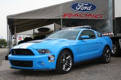 this is my dream car Mustang Shelby Cobra, Blue Mustang, Mustang Girl, Shelby Gt500, Ford Mustang, My Dream Car, Dream Cars, Car Ford, Muscle Cars