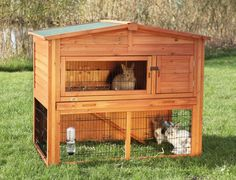 Rabbits make awesome pets however it is better if they are kept outside with the right rabbit hutch. #rabbithutch