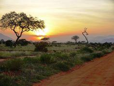 Tsavo East National Park, Kenya safari tours