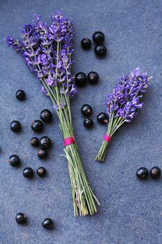 Laura Lusena: Lavander & Black currant