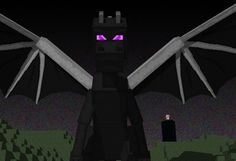 ender dragon is a boss!