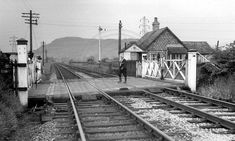 77 photos of the line from Oxenholme through Kendal to Windermere. Windermere, Photo Search, Steam Locomotive, Photo Library, North West, Railroad Tracks, Gates, The Past, England