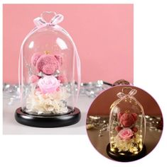 Rose Dome, Glass Flask, Teddy Bear Gifts, Stand By You, Teddybear, Glass Domes, Snow Globes, Parents, Times
