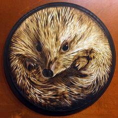 Picozita Espinoza - woodburned hedgehog - pyrography and charcoal on wood - by Monica Moody - http://www.monicamoody.com