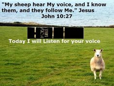 GOD Morning from Trinity, TX Today is Saturday 10-23-2021 Day 296 in the 2021 Journey Make It A Great Day, Everyday! Today I will Listen for Your Voice Today's Scriptures: John 10:27 (NKJV) My sheep hear My voice, and I know them, and they follow Me.