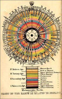 """""""Title: Outlines of Comparative Physiology Maker: Louis Agassiz, 1851 Significance: In opposition to Darwin"""" Information Visualization, Data Visualization, Glass Bead Game, Tissue Types, Arts Integration, Information Graphics, Physiology, Vintage Colors, Color Theory"""