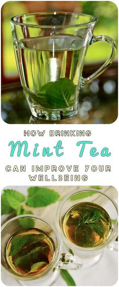Mint leaves are put to use across the globe for their remarkable healing powers along with other civilizations. Mint tea in particular is known to have many beneficial properties when it comes to keeping people healthy and feeling wonderful. Mint plants are able to grow wild in many parts of the world; it is readily accessible and perfect for people to enjoy.