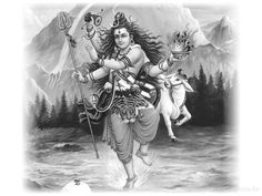 Happy shiv