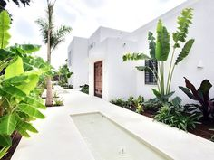 Villa Soto Kings and Queens (full Staff) - San Roque Andalusia, Swimming Pools, To Go, Villa, Luxury, Holiday, Modern, House, Outdoor