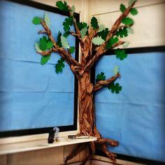 New Paper Tree Classroom Bulletin Boards Reading Corners Ideas Paper Tree Classroom, Owl Classroom, Classroom Bulletin Boards, Classroom Setting, Classroom Design, Kindergarten Classroom, Classroom Ideas, School Displays, Classroom Displays
