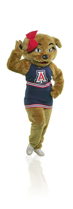 1000 Images About Bear Down On Pinterest Arizona