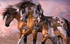 Ces chevaux font une petite sortie en familles: Papa,maman et leur petit poulain!Ce que que c'est beau!