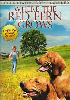 Where The Red Fern Grows - Christian Movie/Film on DVD. A wonderful story for all ages and for all time. A boy's yearning for two Redbone Hound dogs, which his parents couldn't afford during the desolate times of the Depression in the Ozarks, is the setting for this truly triumphant film.  http://www.christianfilmdatabase.com/review/where-the-red-fern-grows/
