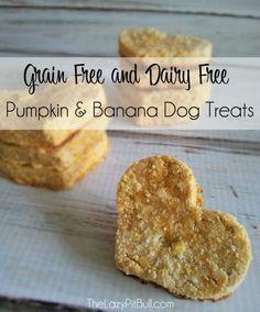Pumpkin & Banana Dog Treats from TheLazyPitBull.com More