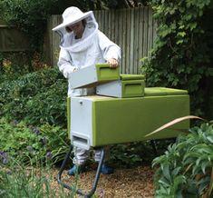 L'apiculture dans les autres pays - L'apiculture à… - L'apiculture en… - une ruche dans mon jardin