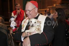Willow at the Blessing of the Animals with Timothy Cardinal Dolan, 2014, NYC