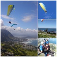 Hermanus Paragliding  Contact: Wayne Heuer Location: Hermanus Tel: 083 251 9892 Email: info@paraglidesa.com Stuff To Do, Things To Do, Great White Shark, Paragliding, Whale Watching, Day Trips, Mountain Biking, Diving, Trail